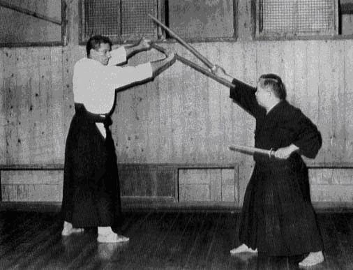 shimizu-draeger